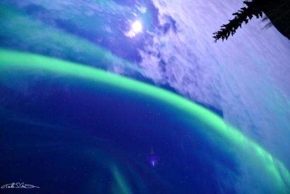 Aurora7