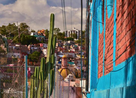 Guanajuato6