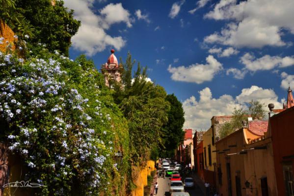 San Miguel de Allende5